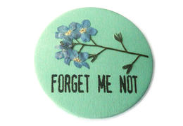 Forget me not cropped